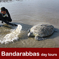Bandar abbas day tours