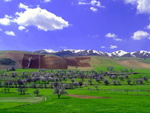 Iran_green_travel